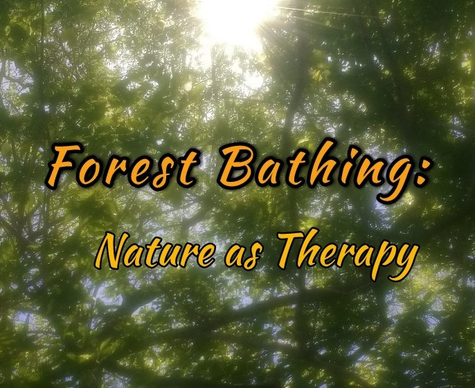 Forest Bathing: Nature as Therapy